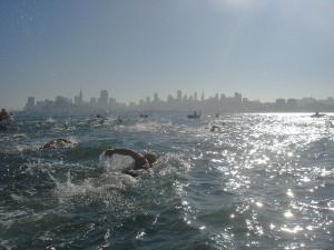 Alcatraz swim